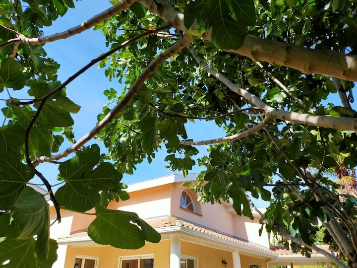Villa entre ville et transports - Chambre 1
