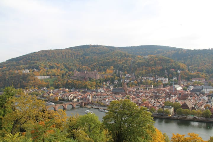 Helles Zimmer 15 Min. vom Stadtzentrum Heidelberg