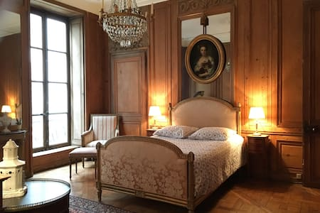 Unique historical flat in Paris - Paris