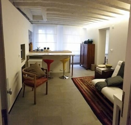 Ca' dell'Arco sul Rio - Venice - Apartmen