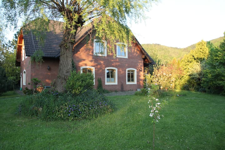 house with a soul near Prague - Všenory - 一軒家