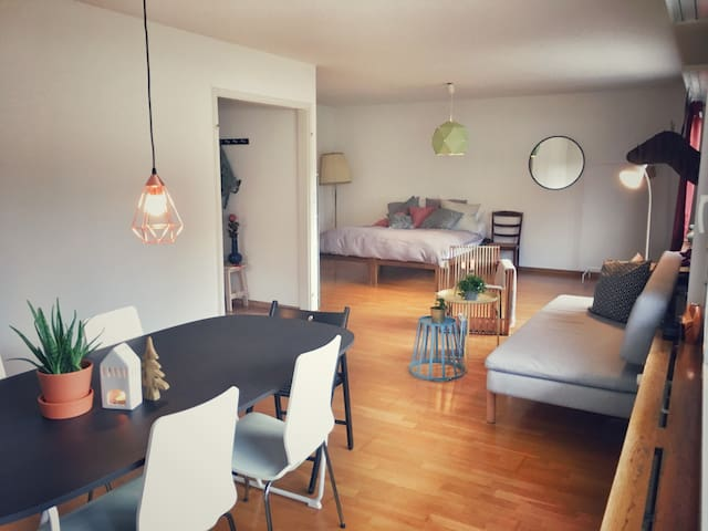 Large family apartment (100m2) in Zurich city