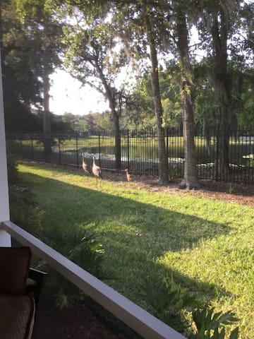 Gated Golf Community Waterview Home - Land O' Lakes - Huis