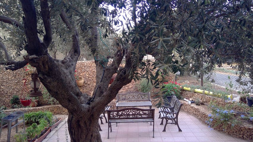 E. Jerusalem home w Beautiful Garden - Room 2