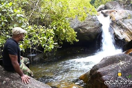 Girankiththa Eco Resort(4) - Kitulgala - Pondok alam
