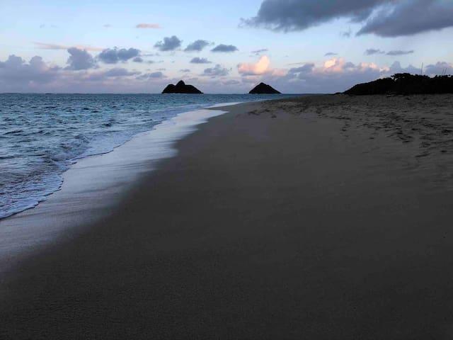 Kiawe by the Sea
