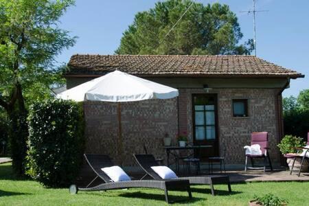 La Capannina - Podere Casanuova - Catignano