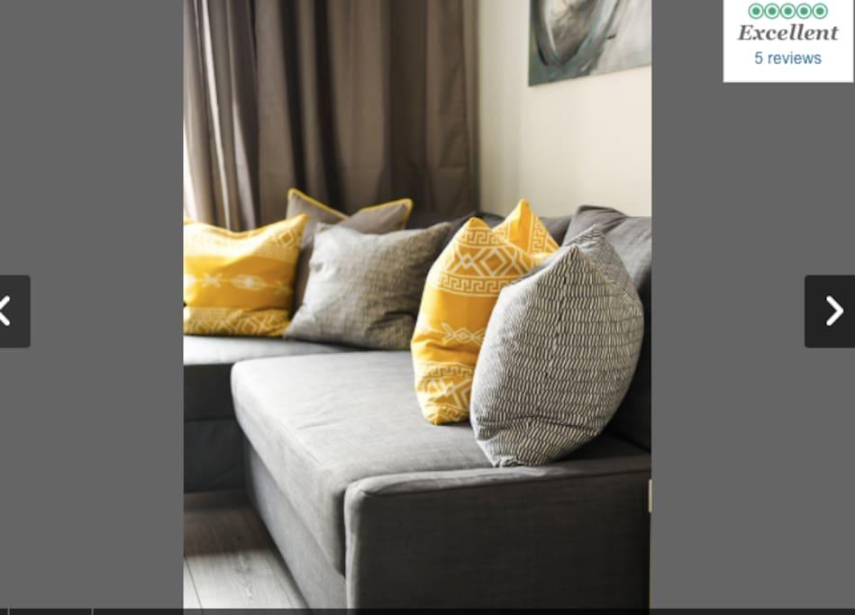 Lounge/Sleeper Sofa
