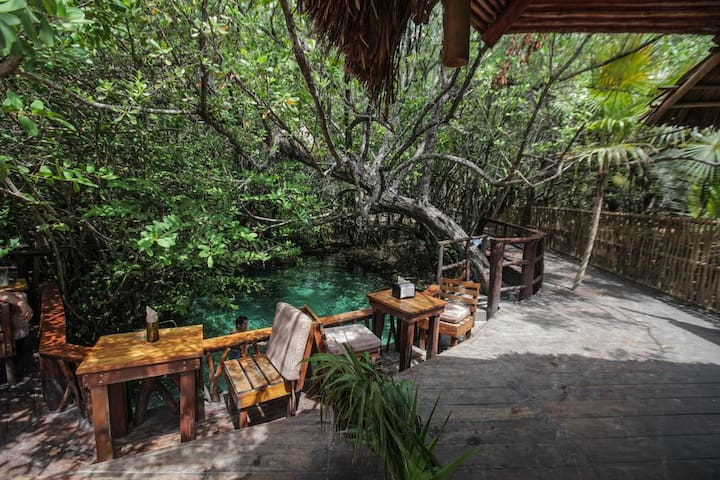 Hostel Female and Male Beds ⭐Privated Cenote&Bar⭐