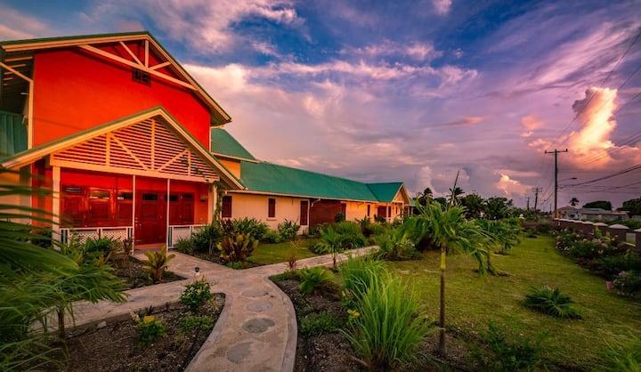 Nne's Gardens - Bougainvillea - Modern  farmhouse