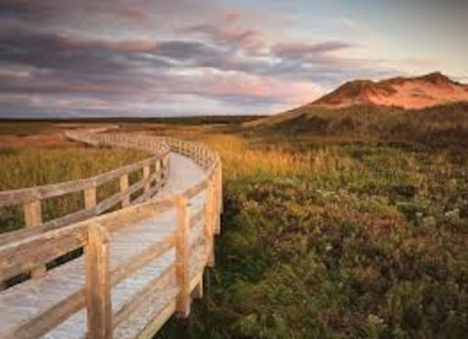 PEI offers up some of the most beautiful beaches in the world. All just a short drive away.