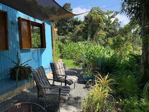 The Sugar Shack er en unik hytte i regnskoven