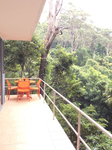 Rainforest Retreat - Church Point - Apartment