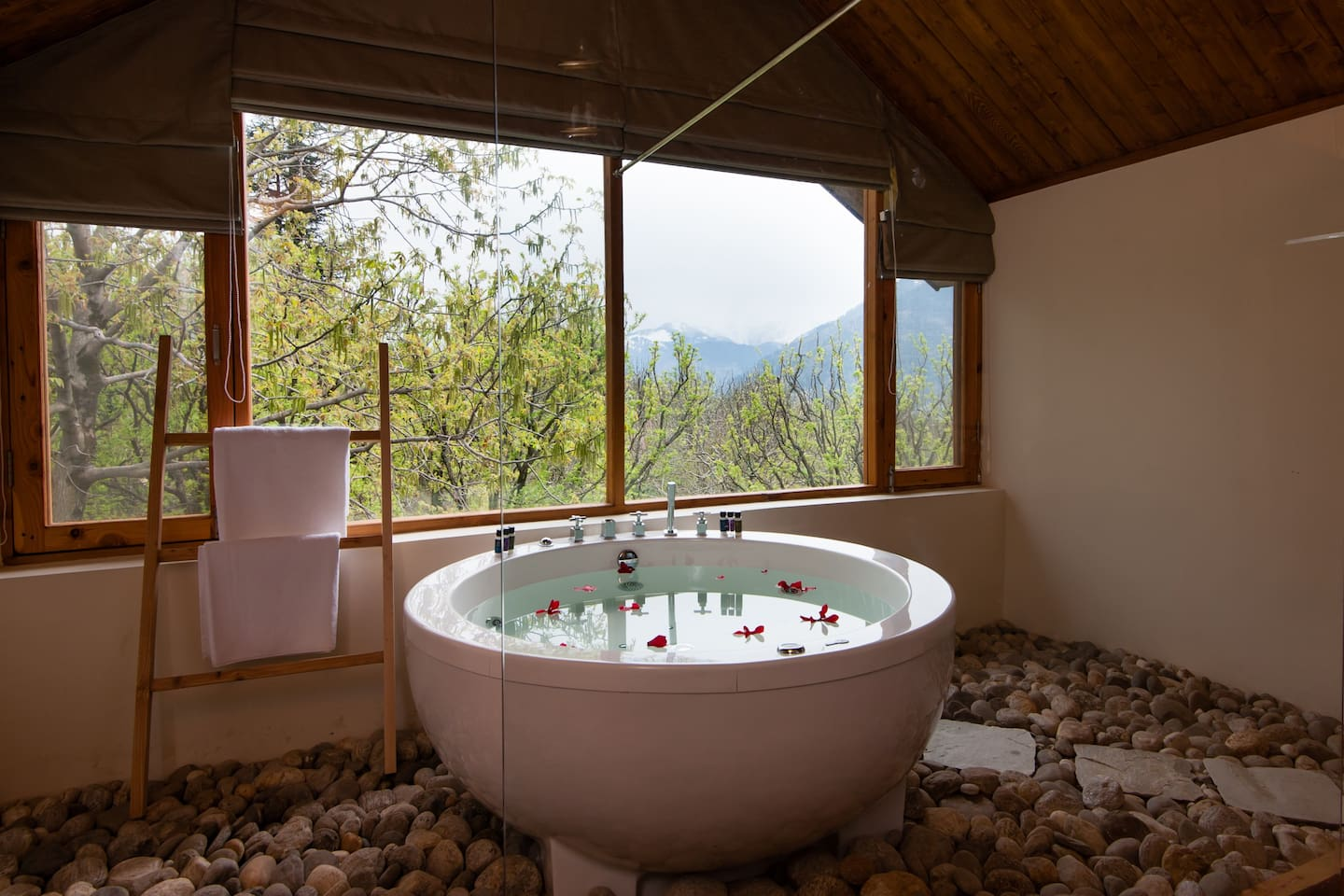 This Homestay In Manali Offers Hillside Pool, Jacuzzi With A View ...