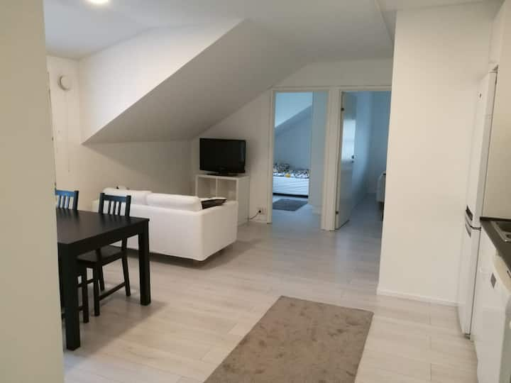 Wonderful 2-bedroom apartment close to city center