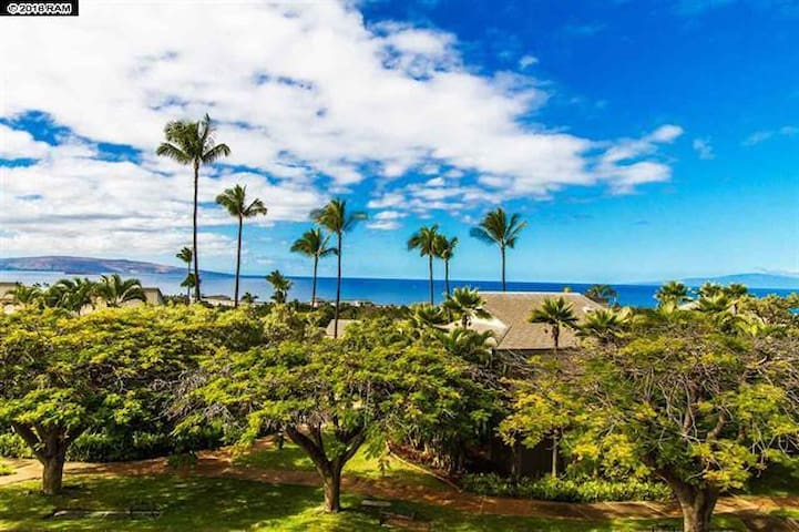 Luxurious, Airy Condo! BEST Ocean Views!! - Kihei