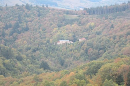 Maison au milieu de la forêt - Haus