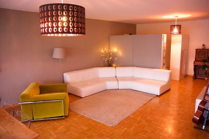 Bel appart UN Palexpo Geneve 155m2 - ジュネーブ - アパート