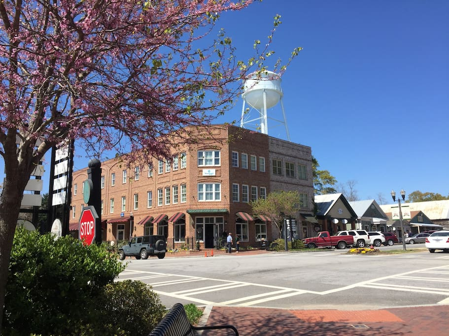 Downtown Senoia ( also known as Woodbury from Season 3 of The Walking Dead ) 2 miles from our house. Several amazing restaurants in town to choose from.