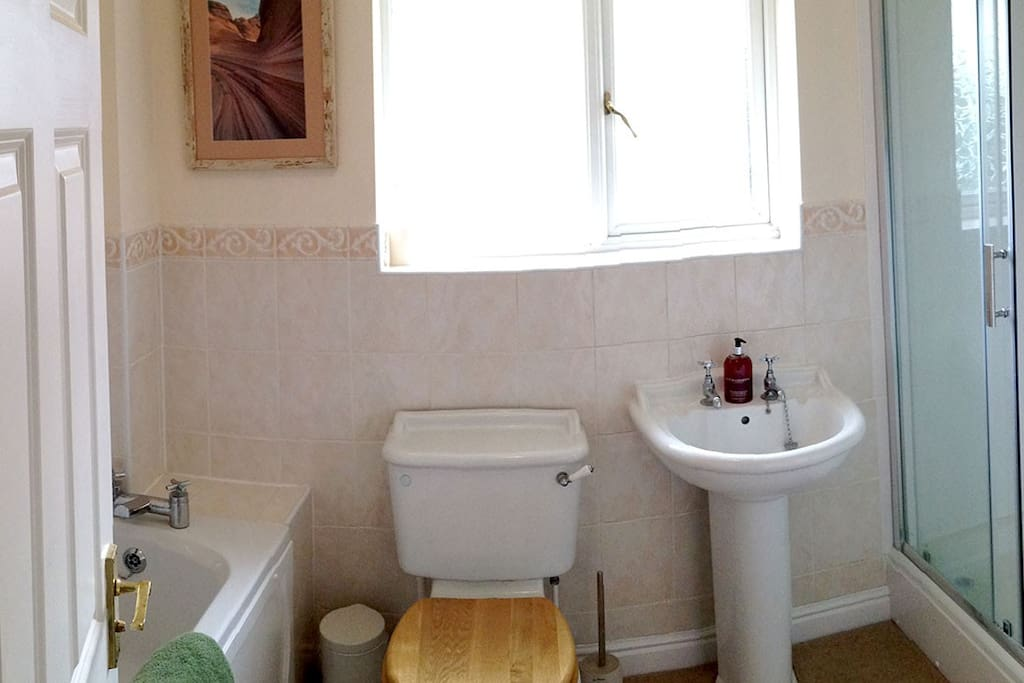 Bath, large shower, toilet and basin.