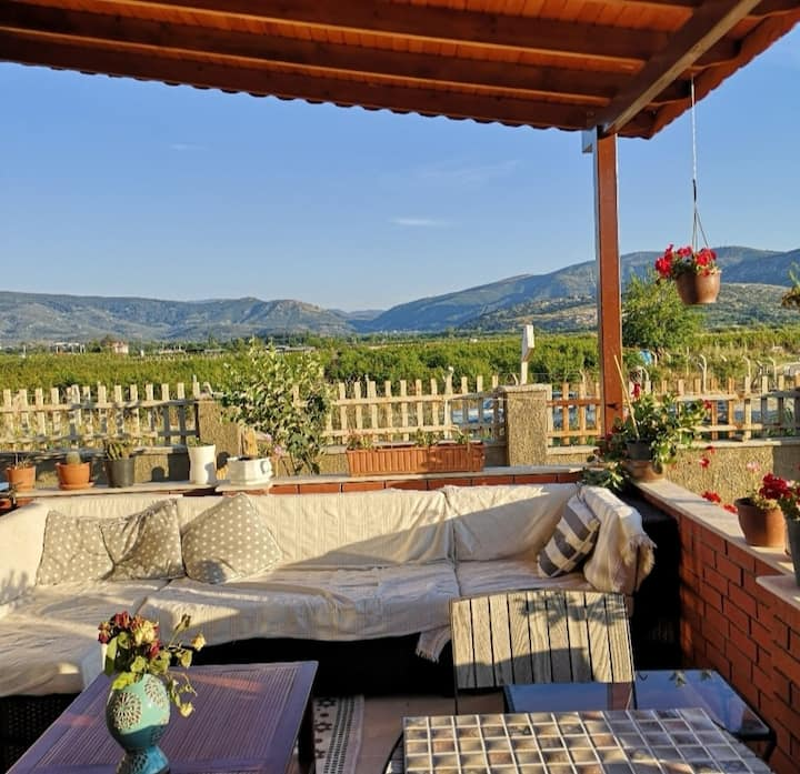 Explore Ephesus and Selçuk from a lovely home