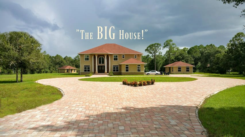 The BIG House! (With EVERYTHING!) - North Fort Myers