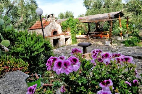 zielone mieszkanie CIS Puglia FG07106091000005370