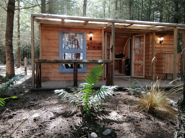 Forest cabin seclusion