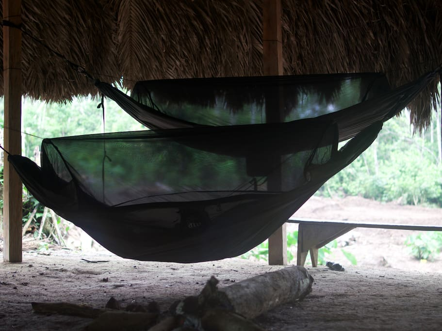 ENO Jungle Nest hammocks with built-in mosquito nets for sleeping and relaxing.