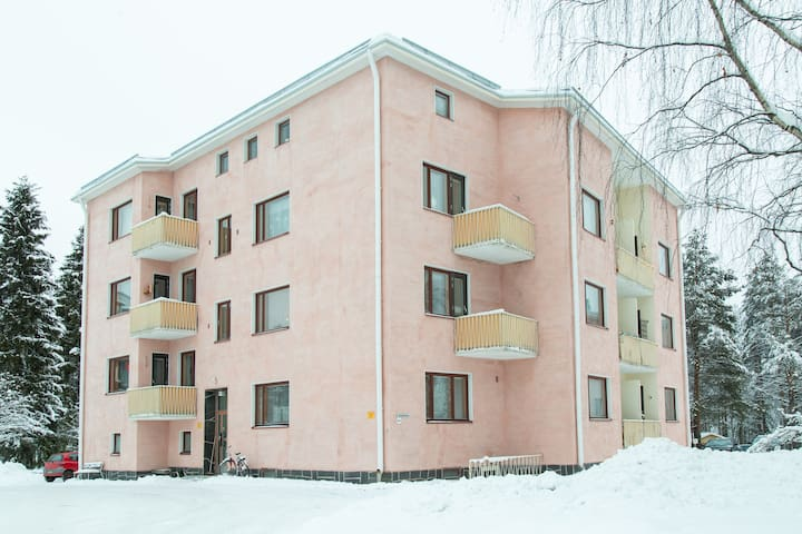 Koskikatu home near center and nature, 4-6 person