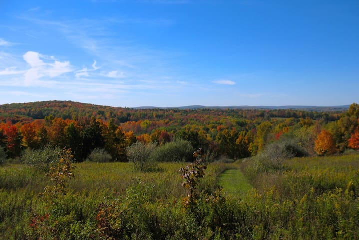Beautiful 45 Acre Eco-Homestead, Private Suite - Ithaca - Casa
