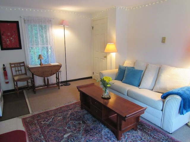 Cozy 1st Floor Apartment in Chestertown