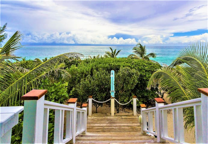 Dolphin Lookout: Panoramic Views in Paradise