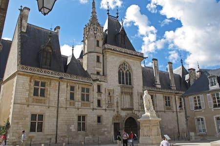 T2 contemporain au pied du palais Jacques coeur - Bourges
