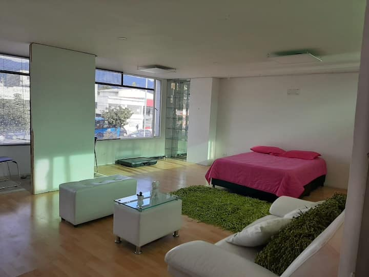 Amazing Loft Apartment in Cedritos