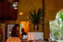 Restaurant and bar area, specializing in fresh local vegetarian and vegan food.