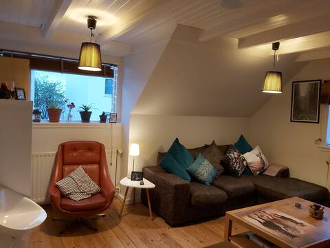 Small & cozy room in the heart of reykjavik