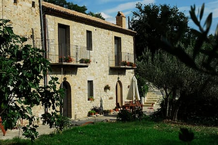 Country house surrounded by olive trees