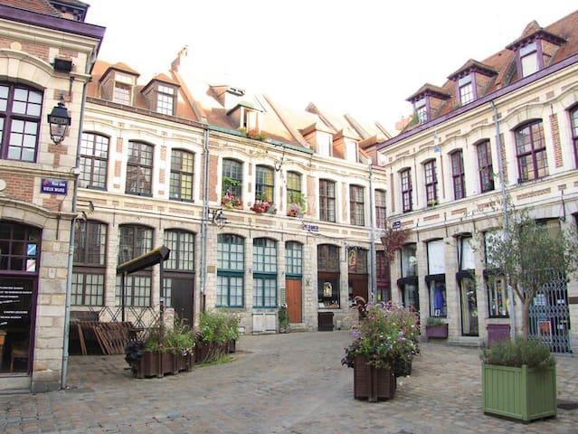 Charmant appartement, coeur vieux Lille, parking