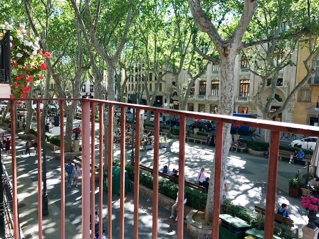 Cosy apartament on Paseo del Borne - Palma - Apartment