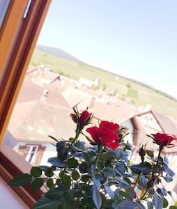 La Rose du Vignoble