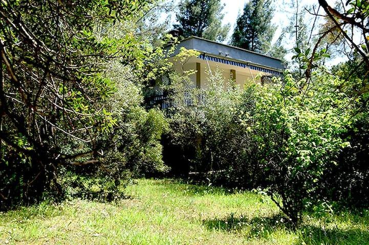 Easy going Villa  Vourvourou Halkidiki