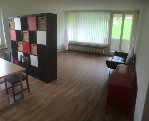 Beautiful 90 m2 flat at convenient location - Wollerau - Apartment