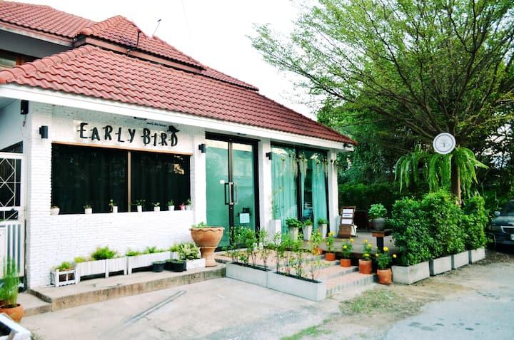 Early Bird Hostel Ayutthaya Mixed Dorm 10-Bed Room