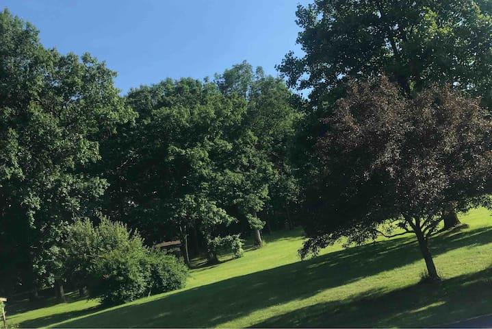 Escape to a Woodland Paradise
