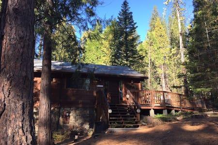 Arnold Big Trees Mountain Retreat