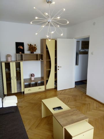 Apartament Octavian Brasov - Brașov - Appartement