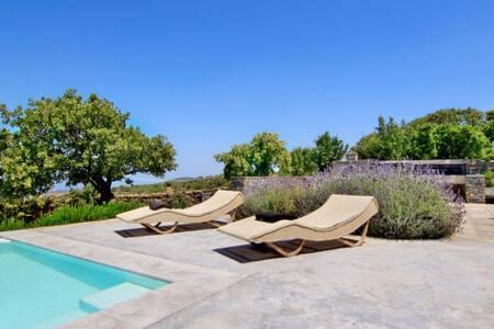 Villa Drys - Apartment