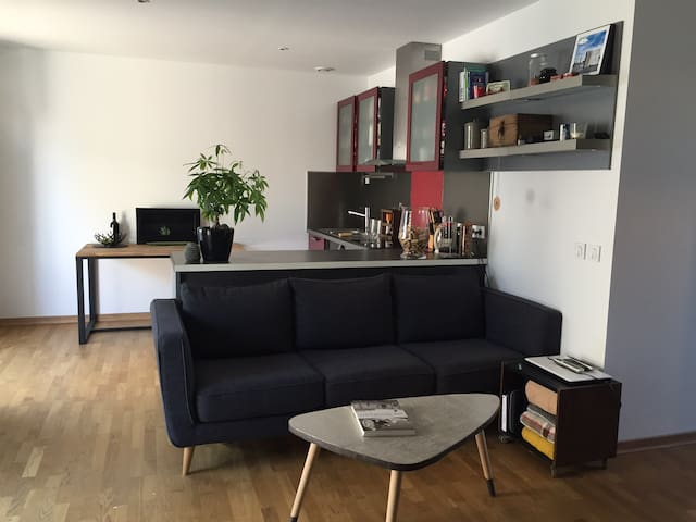 AppT T3 avec terrasse centre perpignan - Perpignan - Appartement