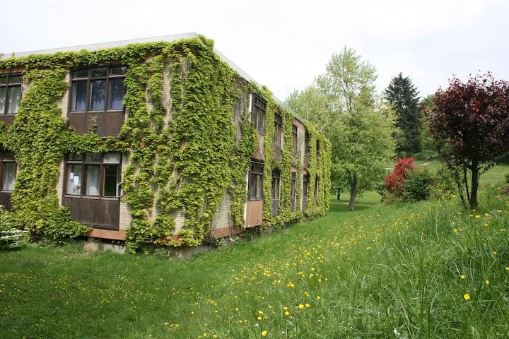 Wildbach Appartement